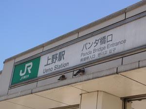 23kuji39